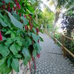 Bayview-Gardens-Hotel-19